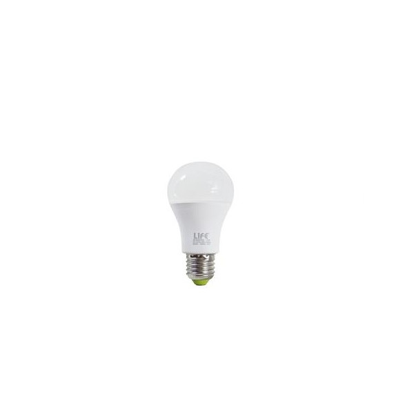lampada led E27 15W 6500K